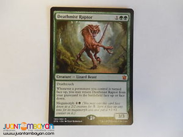 Deathmist Raptor (Magic the Gathering Trading Card Game)