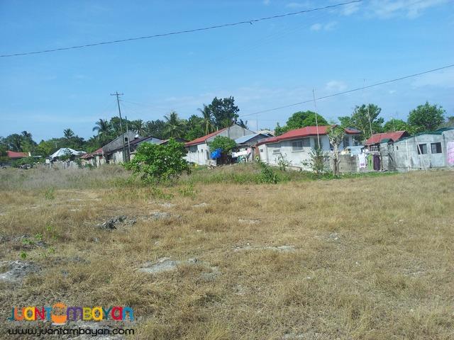 1 hect lot for sale in Sogod, Cebu