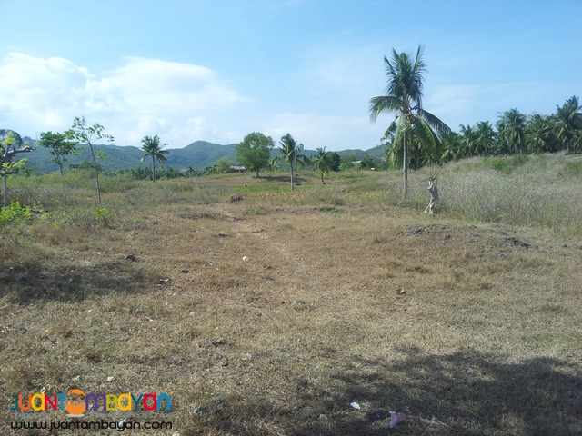 1 hect lot for sale in Sogod, Cebu