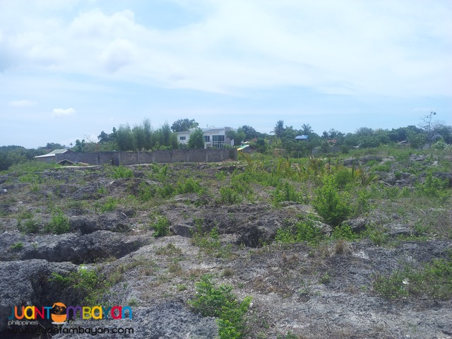 1 hect lot for sale in Cordova, Cebu