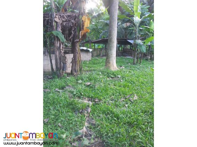 1,000 sq.m lot for sale in Garing, Consolacion,Cebu