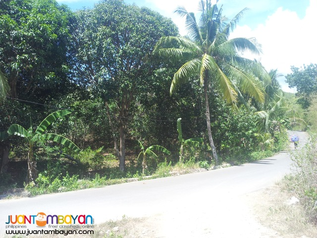 10,415 sq.m lot in Carmen, Cebu