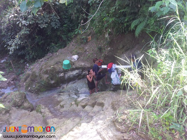 20 hectares for sale in sogod,cebu