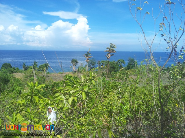 26 hectares beach lot for sale in bogo,cebu
