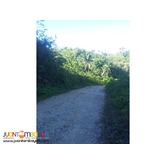36 hectares for sale in leyte, leyte