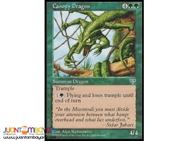 Canopy Dragon (Magic the Gathering Trading Card Game)