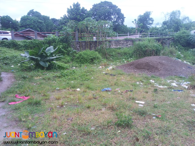 162 sq.m lot for sale in guadalupe