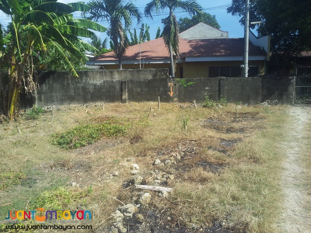 221 sq.m lot for sale in talisay city, cebu