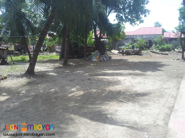 918 sq.m lot for sale in talisay city, cebu