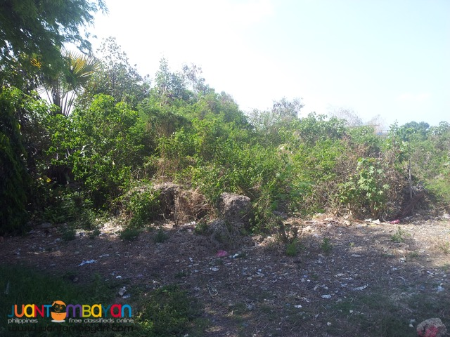 6,859 sq.m lot for sale in cordova