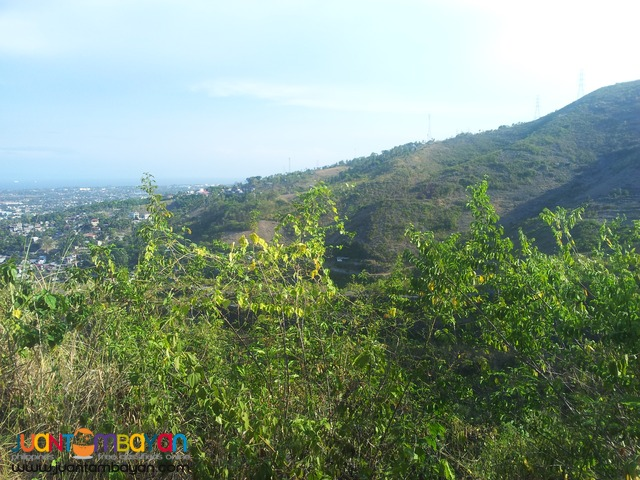 150 sq.m lot for sale in south hills subdivision
