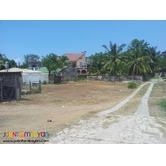 226 sq.m lot for sale in Naga, Cebu