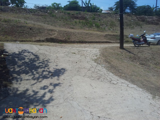 226 sq.m lot for sale in Naga, Cebu
