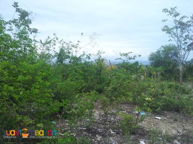 973 sq.m overlooking lot for sale in Talisay City, Cebu
